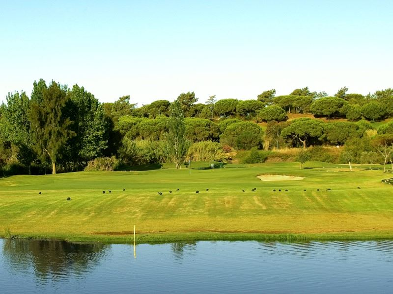 Olives Golf Course (Hole 05)